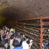 Winery Tour(Lunch&Dinner) / USD 120