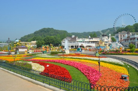Everland Private Tour (Day pass) / USD 55 – Seoul