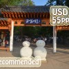 Nami Island+Petite France+N Seoul tower Shuttle Bus (No Shopping)