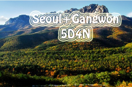 Gangwon+ Seoul Package Tour (5D4N) / USD 700