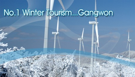 #Info_Festivals in Gangwon Province & Shuttle bus