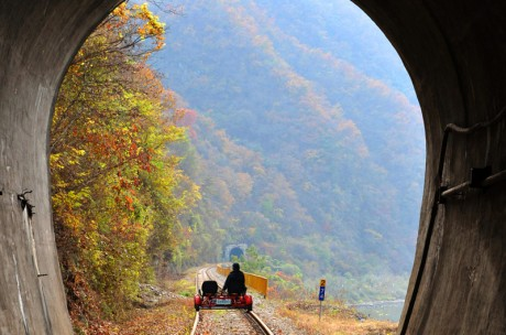 Gangchon Rail Bike (Gimyujeong Station) Ticket / USD 23