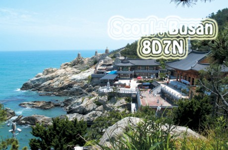 Seoul+Busan Package Tour (8D7N) / USD 1,200