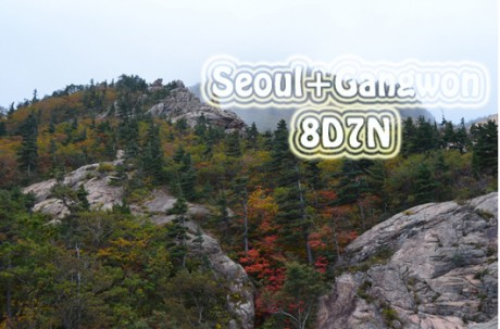 Seoul+Gangwon Package Tour (8D7N ) / USD 1,200