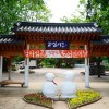 (S) Nami Island+Rail Bike+The Garden of Morning Clam / USD52 (KWN57,500)