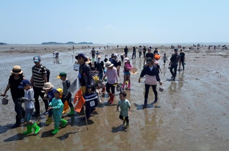 Fishing Village + Sihwa Narae Observatory Tour + Lunch (March ~ November) / USD 70