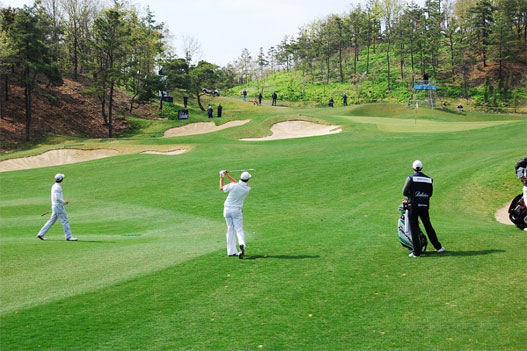 package_golf_08