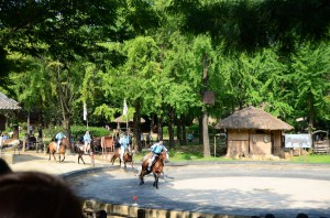 Korean Folk Village (13)